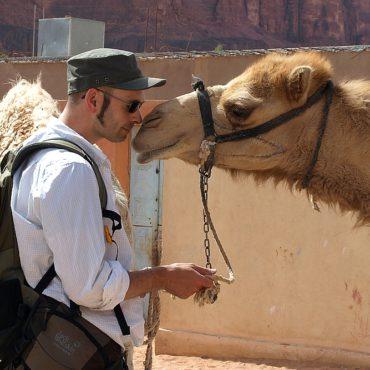 Arabischer & Nordafrikanischer Bereich