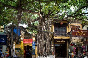 Silk Street Vietnam