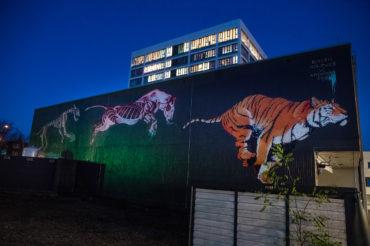 Hamburg Street Art